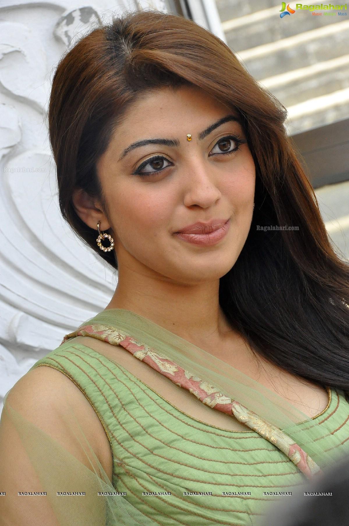 praneetha image 2 tollywood actress wallpapers stills