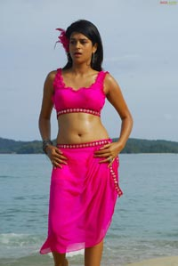 Shradha Das Photo Gallery from Mugguru