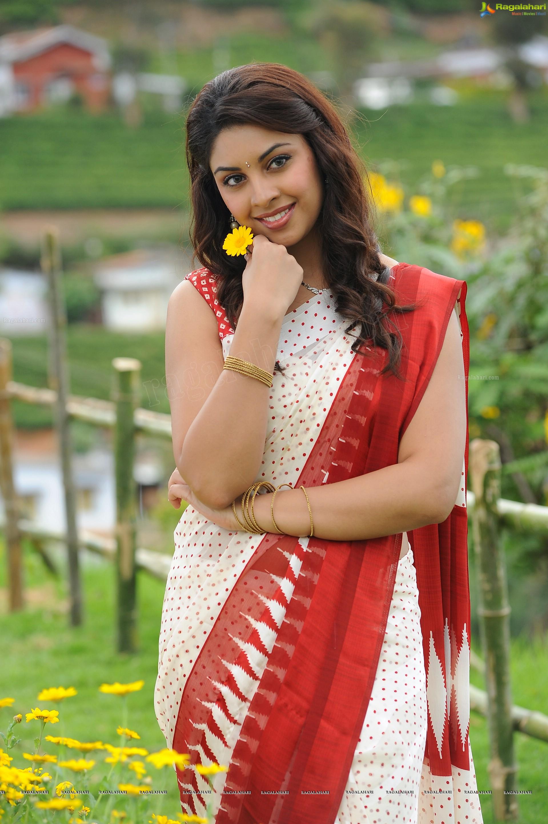 richa gangopadhyay hot saree photos indian actress pictures