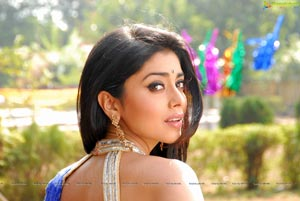 Shriya in Saree