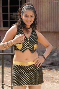 Sindhu Tolani Spicy Photo Gallery