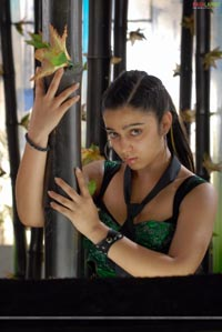 Sexy Charmi Photo Gallery/Wallpapers From 16 Days