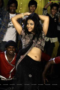 Item Girl Swetha Basu Prasad Photos