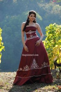 Kajal Agarwal Image 12 Beautiful Tollywood Actress Picsimages