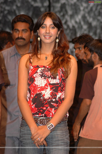 Sanjana at Bujjigadu Triple Platinum Disc Function