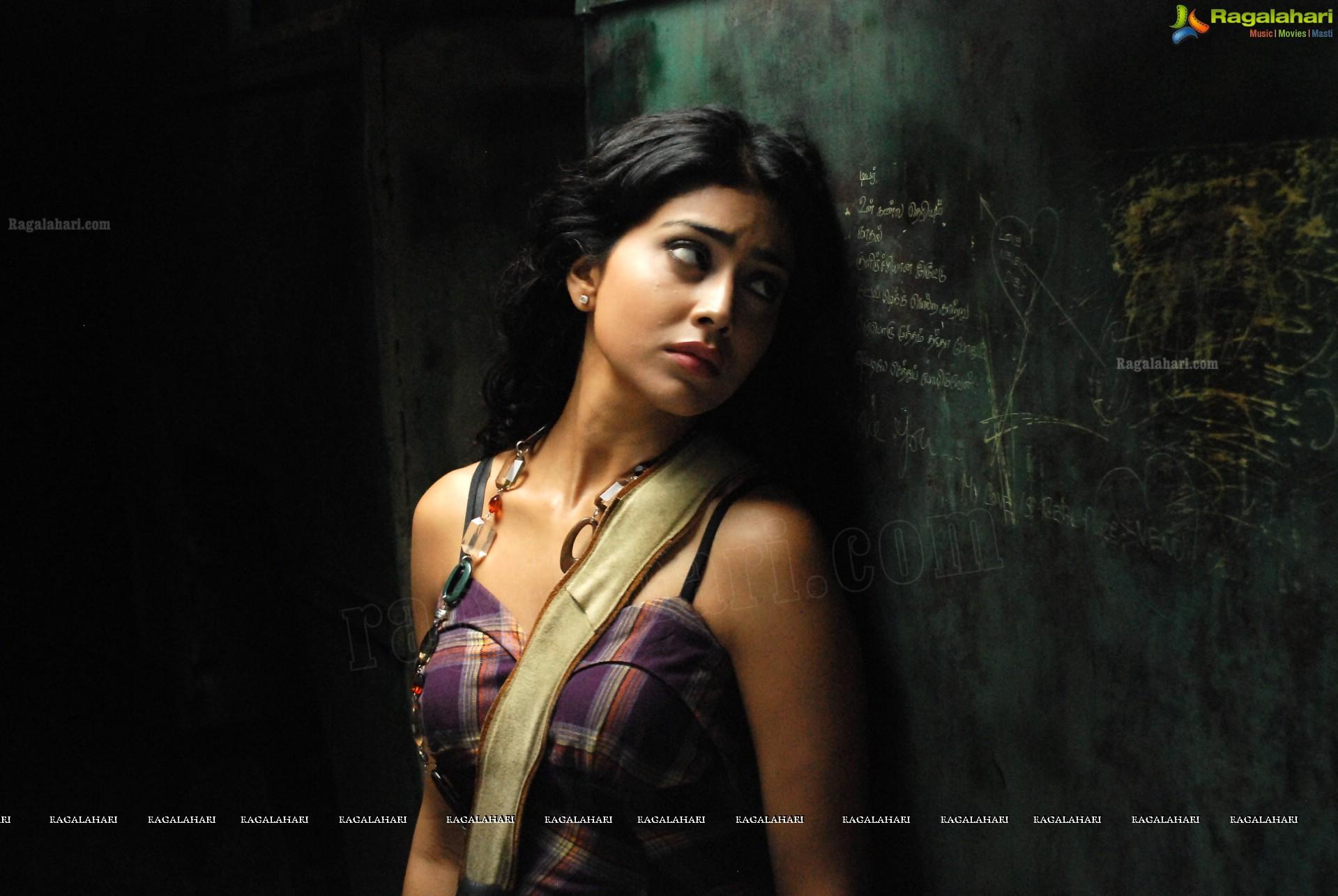 Shriya Saran Hd Image 1 Telugu Actress Stillsimages Photos Wallpapers Stills Posters